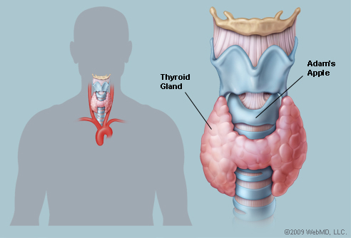 THYROID_72