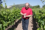 Peter Arnold and his amazing stories in his vineyard