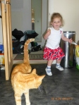 My 'Great niece' chasing my cat Ginger. Good to be 'great' at something!