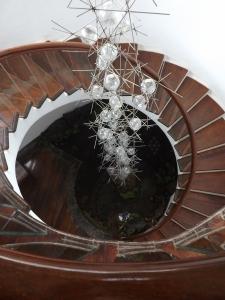 Jardin de Cactus, Lanzarote César Manrique